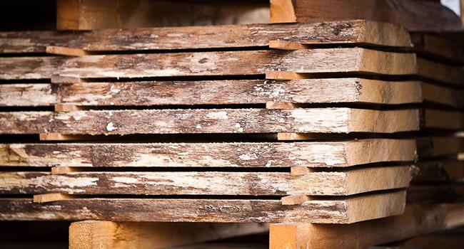 rundholz-wg-holzmarkt